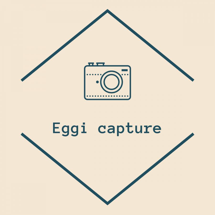 Eggi Capture